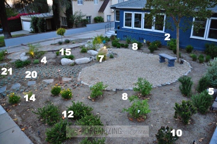Plant placement in native drought tolerant front yard for Front lawn plant ideas