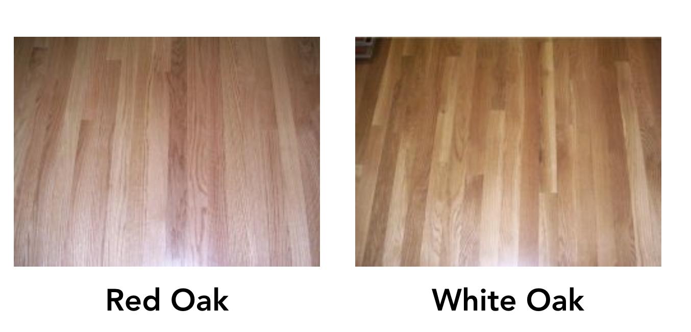 Red Oak Vs White Oak Hardwood Flooring What S The Difference