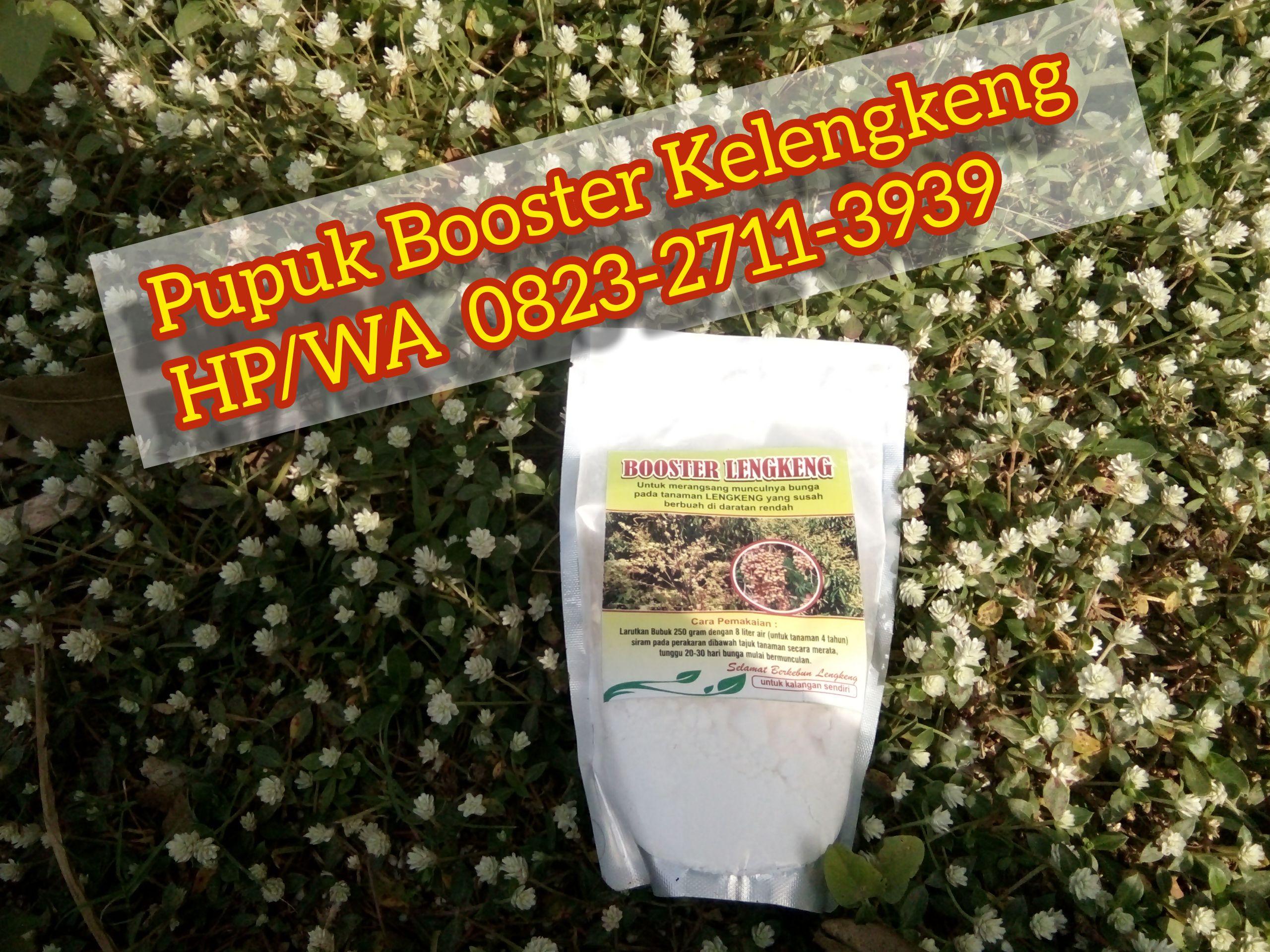 Best Price Hp Wa 0823 2711 3939 Jual Booster Kelengkeng Kclo3 Ke Boyolali Jawa Tengah Buah Aplikasi Penjualan