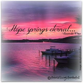 Hope Springs Eternal Live Life Alexander Pope Quotes Life