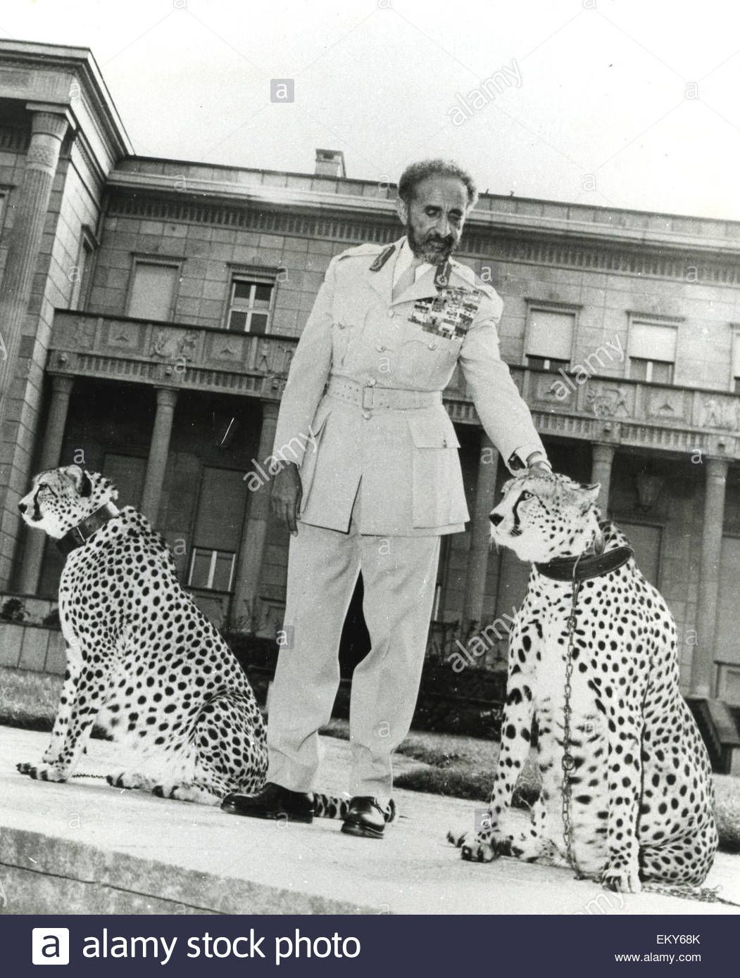 Haile Selassie 1892 1975 Etheopian Regent About 1955 Photo Interfoto Eky68k From Alamy S Library Of African Royalty Haile Selassie Black History Education