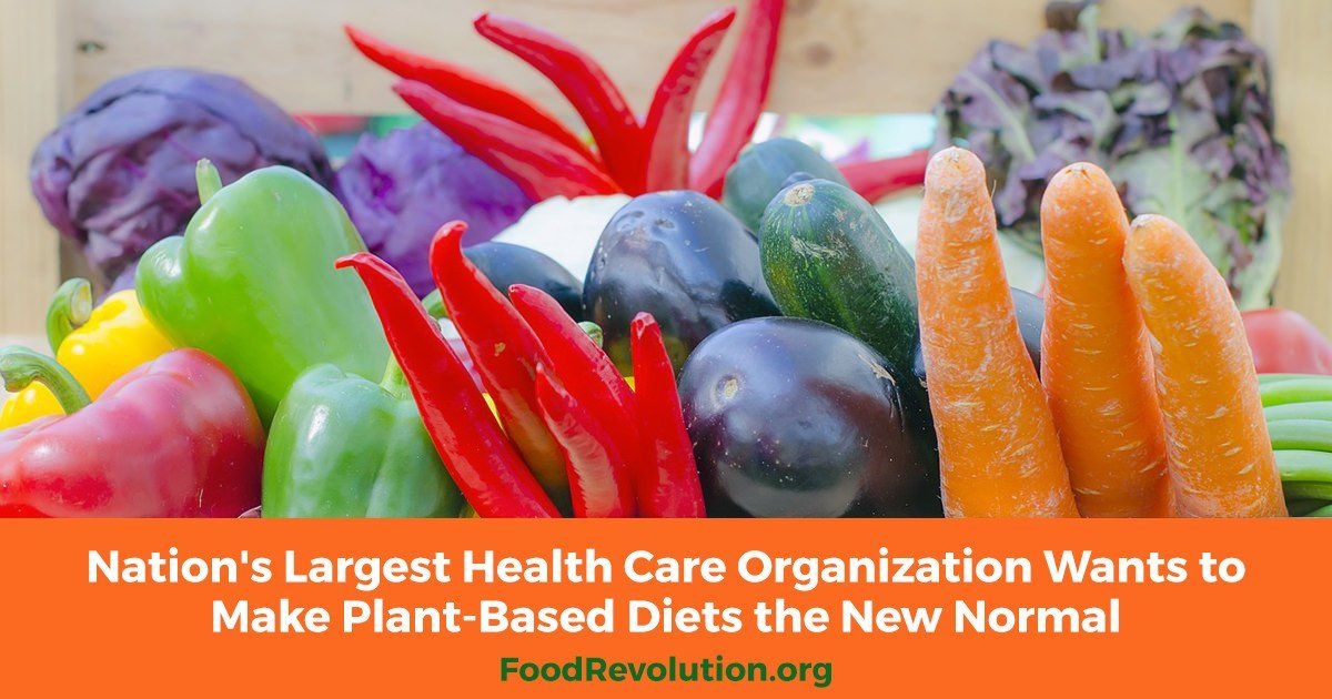 Nation S Largest Health Care Organization Wants To Make Plant Based Diets The New Normal Plant Based Diet Nutrition Guidelines Plant Based
