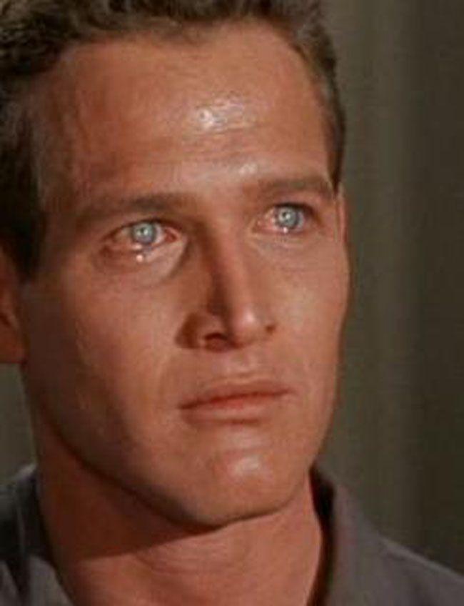 Paul Newman As Brick Pollitt Beautiful People Paul