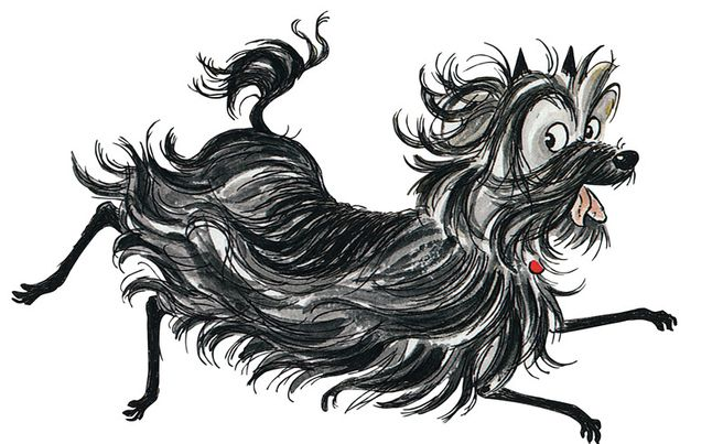Dame Eager For More Hairy Maclary Tales In Dog Years Scruffy