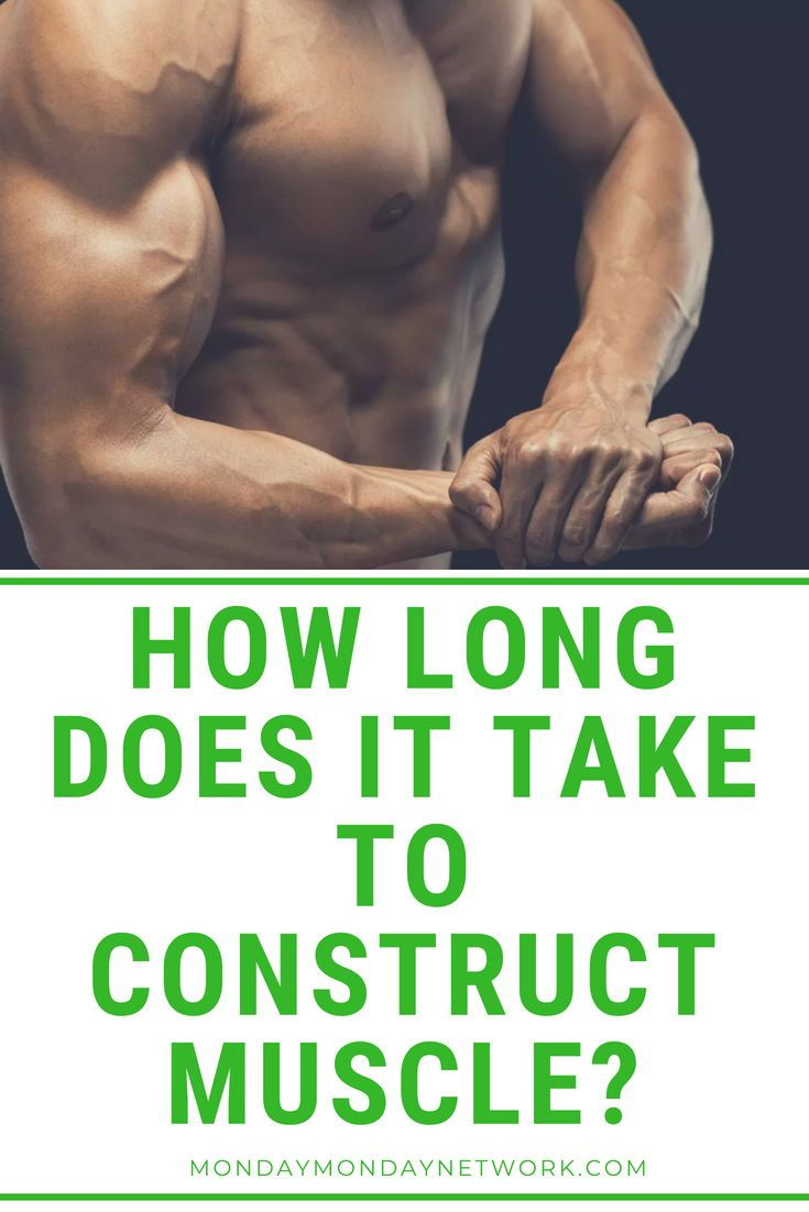 How long does it take to construct muscle build muscle