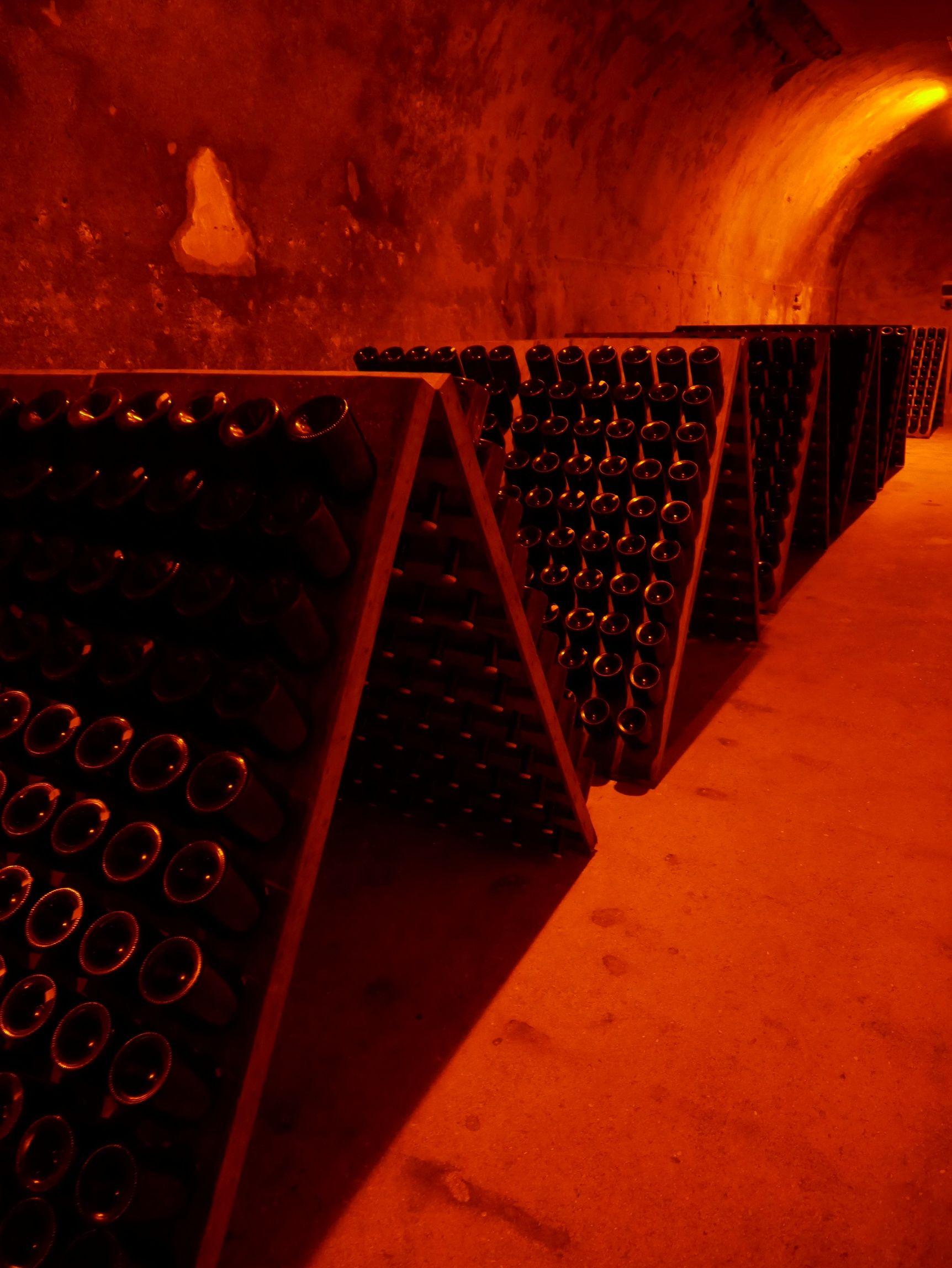 Taittinger Caves And Vineyard Visit Reims Champagne Region France En 2020