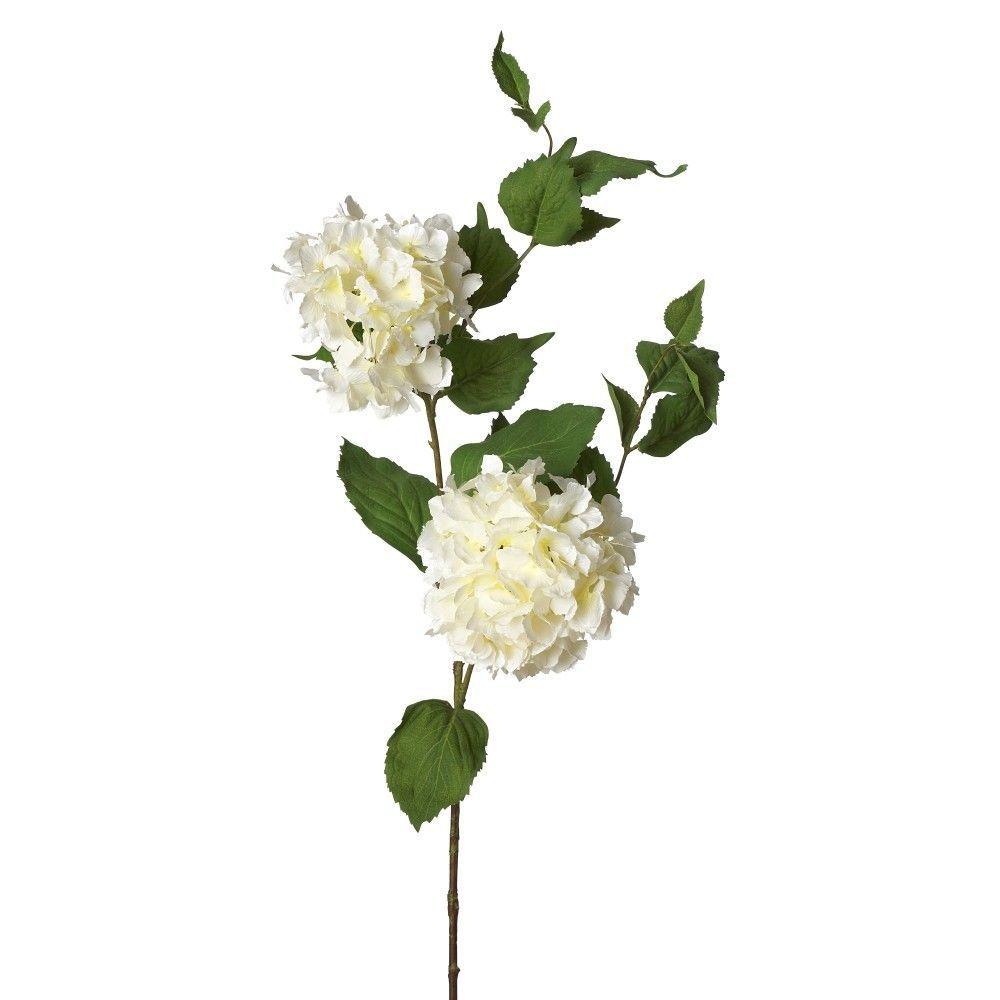 Fleur Hydrangea (Set of 12)