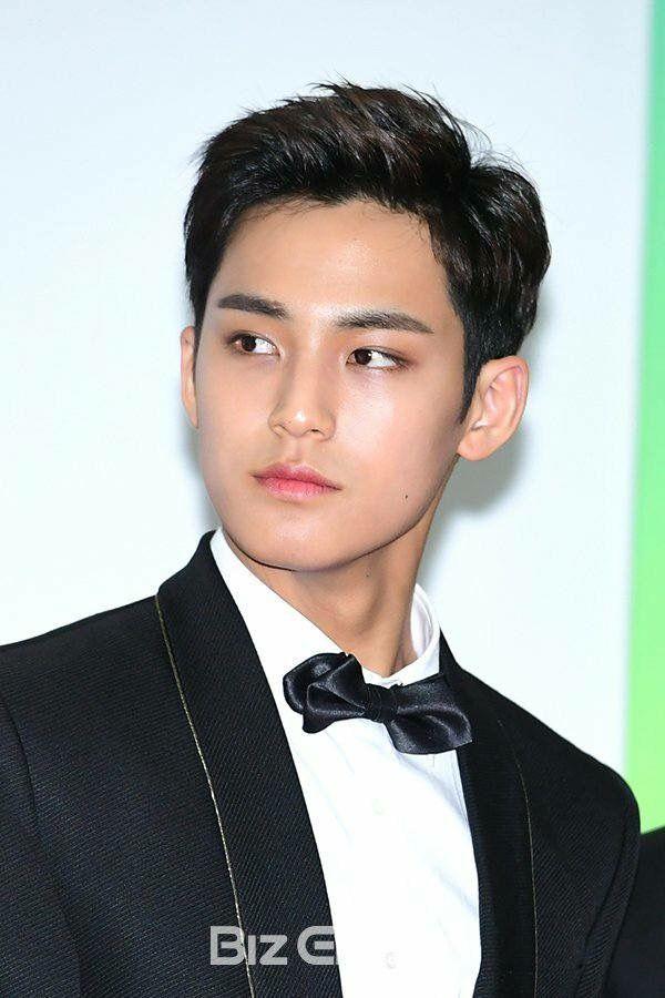 Mingyu looking like those expensive statue