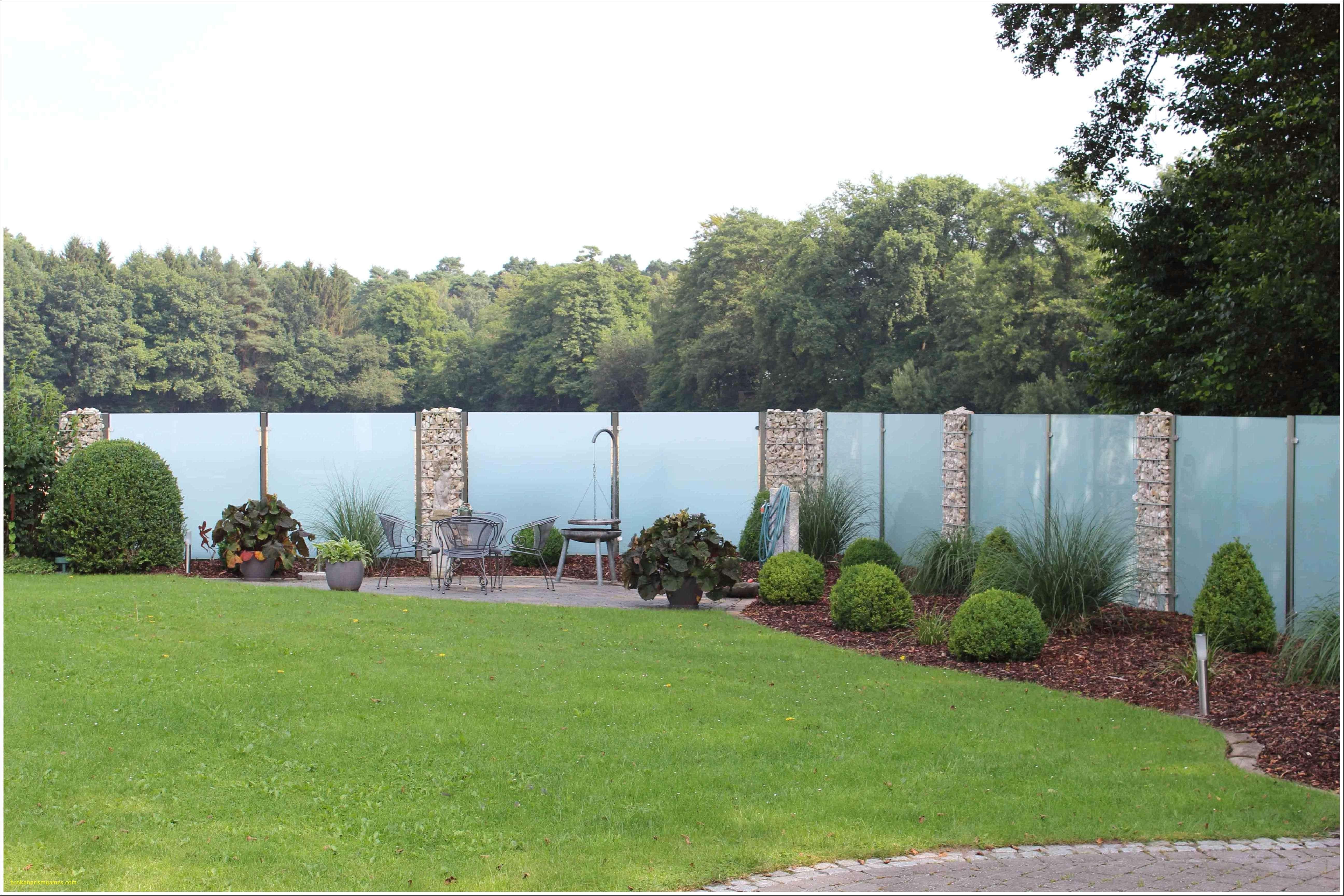 Baustelle von Garten Bronder Hecke am laufenden Meter
