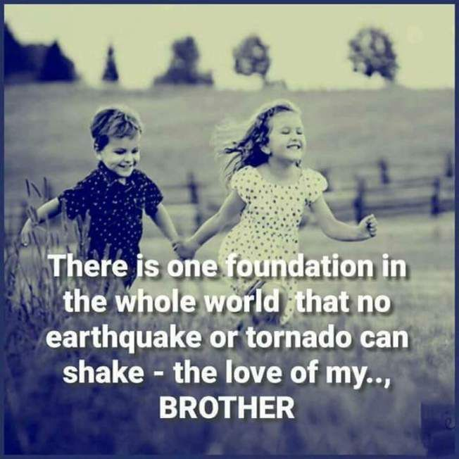 A Sister Without Brother Is Like A Butterfly Without Color Brother Quotes Big Brother Quotes Brother Birthday Quotes