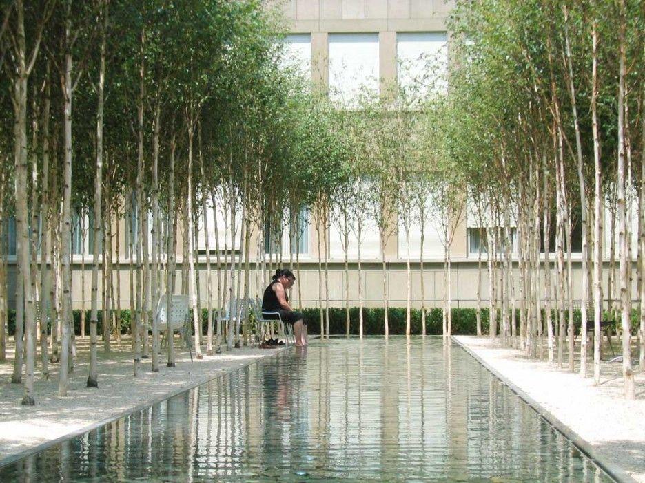 image result for rectangular pool inside courtyard
