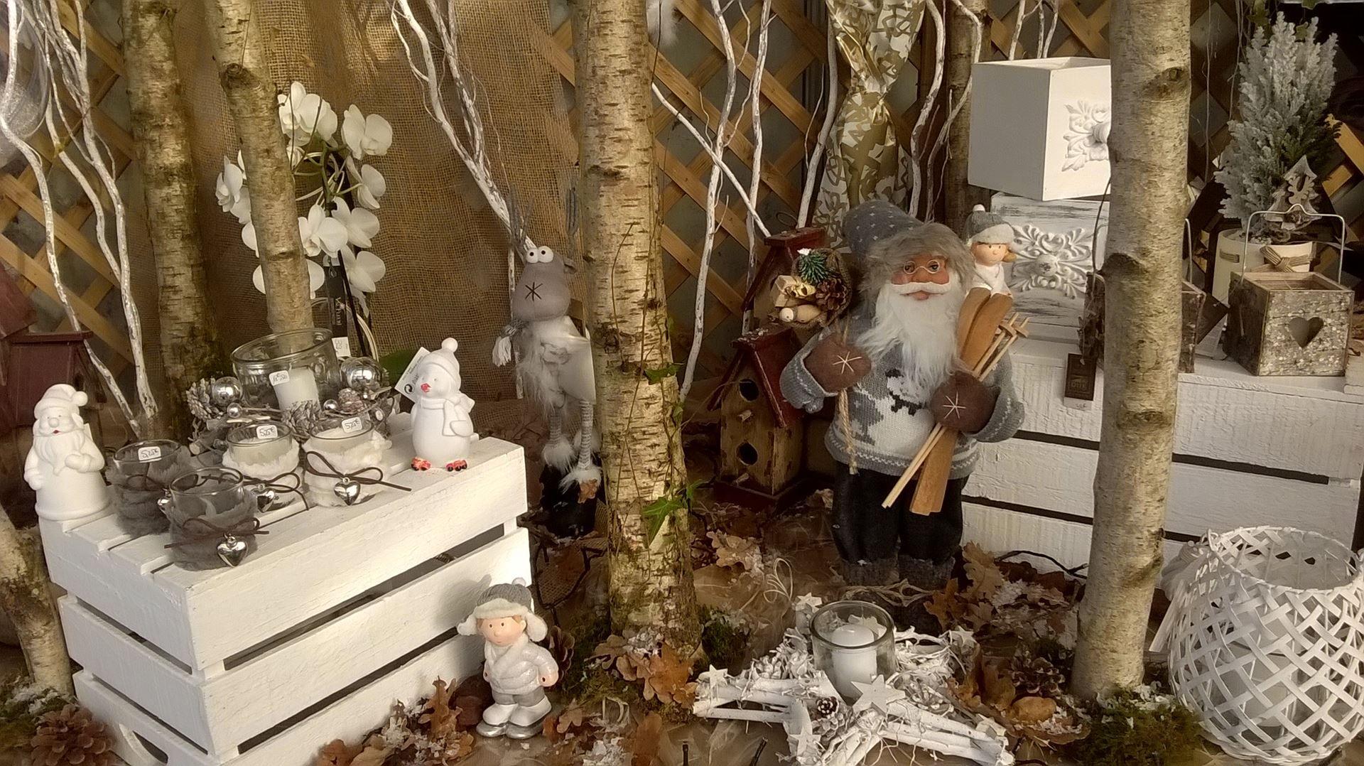 vitrine nature  Decoration noel, Deco noel, Vitrine noel
