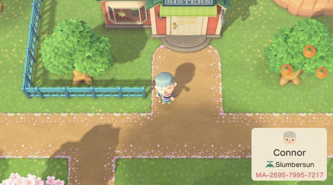 Animal Crossing New Horizons Cherry Blossom Path Animal Crossing Animal Crossing Villagers Animal Crossing Qr