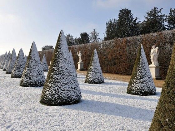 Winter's soldiers in the park at Versailles