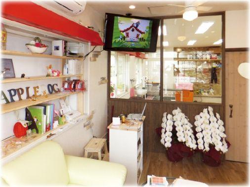 ドッグサロン Appledog ドッグサロン アップルドッグ ペットサロン ペット美容室検索ドッグビューティー 内装 美容 ペットサロン
