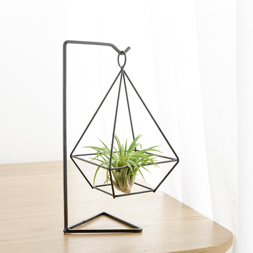 Amazon.com: Mkono Air Plant Holder Himmeli Metal Stand For Hanging Airplant  Tillandsia (