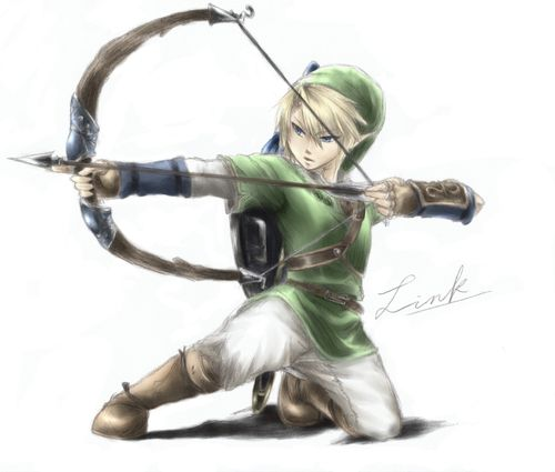 Warriors Into The Wild Setting: Even Link Can't Shoot As Amazingly As Halt. That One Pole