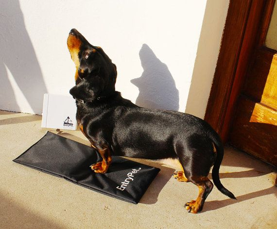 EntryPet alarm mat by EntryPet on Etsy