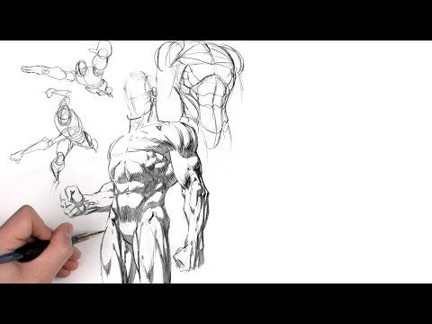 Dynamic Figure Drawing Volume 3: The Body | The Gnomon Workshop ...