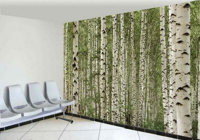 Wall Murals Nature   Google Search Part 75