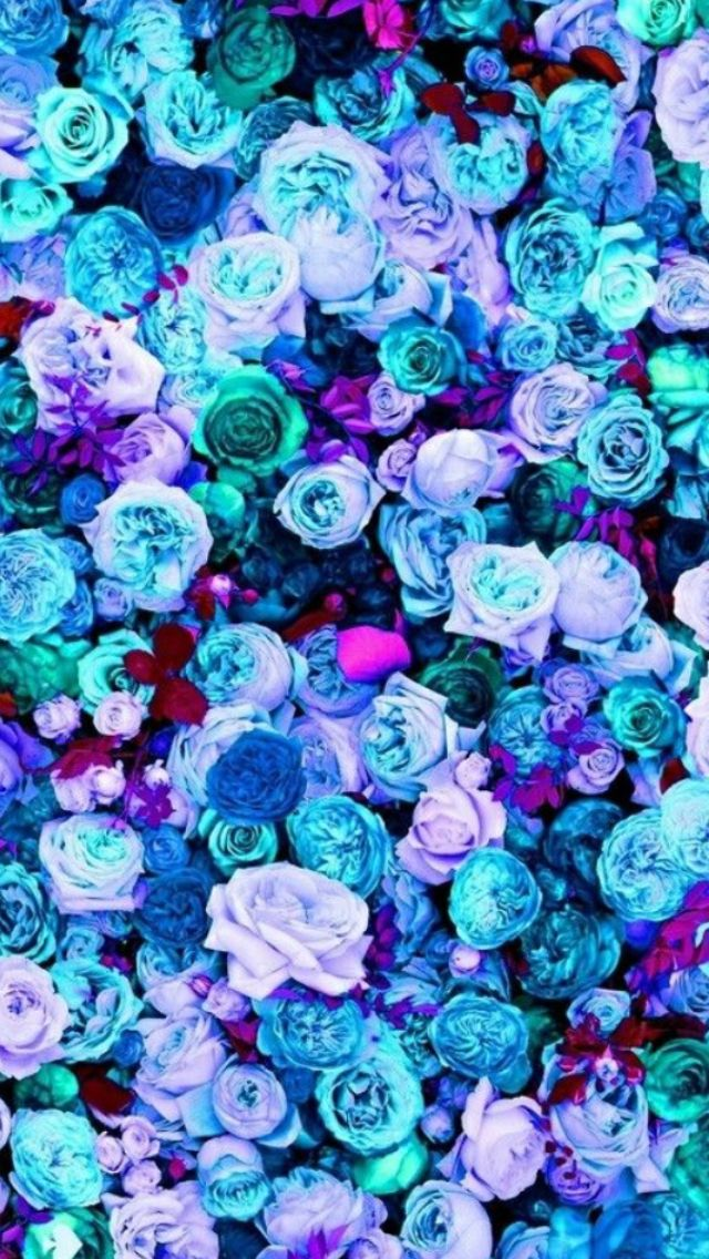 Cute Teal Pink Purple Rose Wallpaper For IPod 6