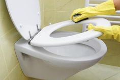 How To Remove Human Urine Stains From A Toilet Seat Toilet Stains Toilet Cleaning Toilet