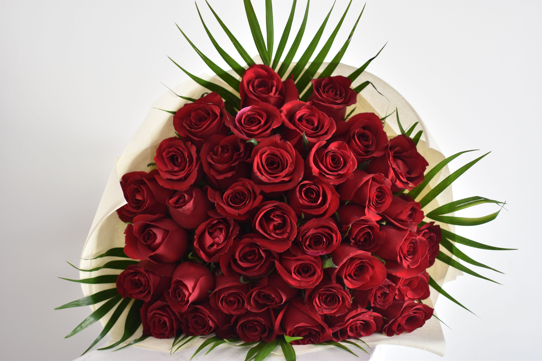 Flower Delivery Dubai Online Florist UAE Ferns N