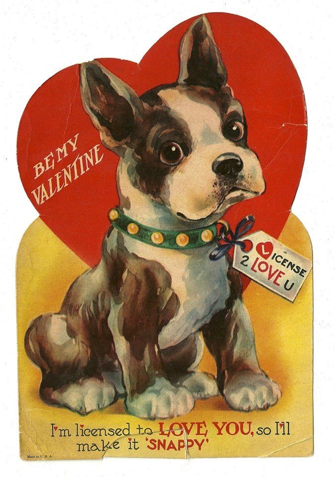 Pin By Barbara Guiher On Boston Terriers Forever Vintage Valentine Cards Retro Valentines Dog Valentines