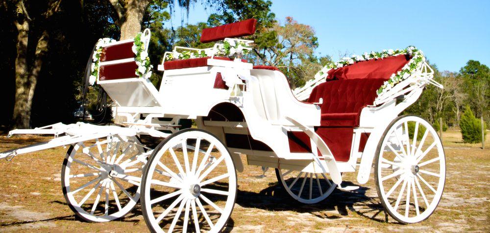 Wedding Orlando Horse Carriage Horse And Carriage Wedding Orlando Wedding Wedding Carriage