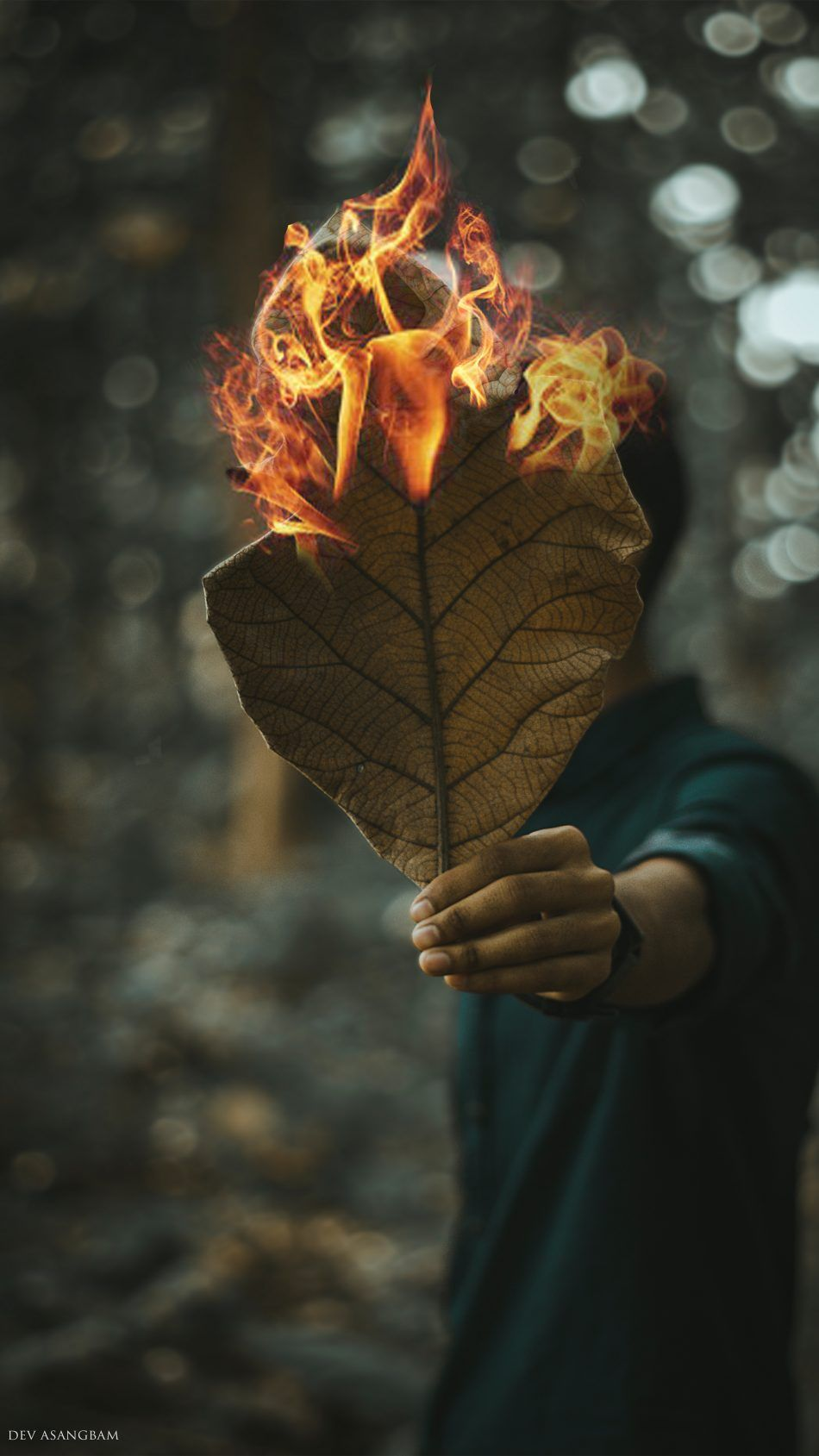 Man Leaves Fire Photography 4k Ultra Hd Mobile Wallpaper Fire Photography Photography 4k Macro Photography Tips