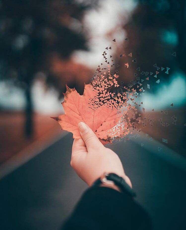 ¿Cuántas cosas estamos dejando de hacer hoy Y seguimos en el mismo lugar sin hacer nada? Es momento de quitar la barrera de nuestra mente y empezar a trabajar por lo que anhelamos, que aquello que tanto queremos ser, deje de ser sueño y se convierta en realidad.