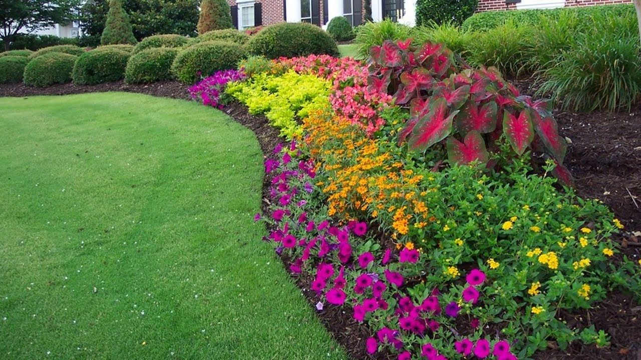 Colorful Flower Beds Improve Your Home's Curb Appeal | garden ... on colorful cactus garden, colorful forest, colorful garden english, colorful annual flowers, country gardens, colorful landscaping, cottage gardens, colorful summer flowers, colorful daisy flowers, colorful tropical flowers, rose gardens, colorful roses, colorful annuals for full sun, colorful perennial flowers, hummingbird plants for shady gardens, japanese gardens, colorful restaurants, colorful hearts, colorful blooming flowers, colorful garden beds,