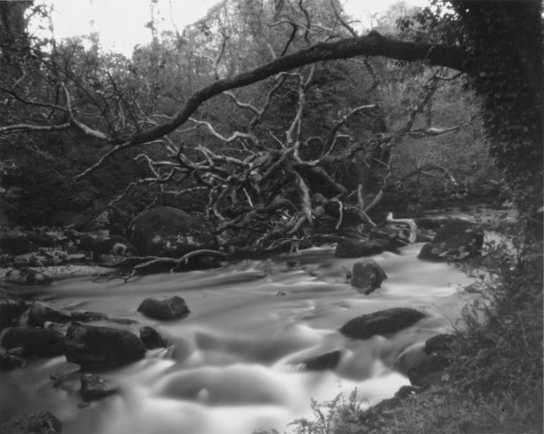 Original Landscape Photography By Robert Padley Landscape Art On Paper Caught By The River Ii Limited Edition Of 10 In 2020 Landscape Photography River Landscape Art