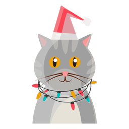 Christmas Cat Icon Cat Icon Christmas Cats Cats