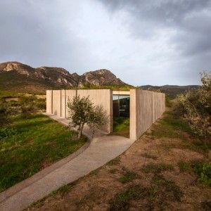 """Tense Architecture Network completes a  """"frugal"""" concrete home in a Greek olive grove"""