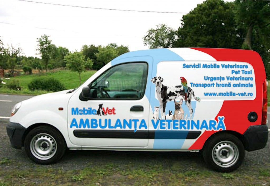 Chiar și perușii adoră MobileVet.ro Mobile vet, Vets