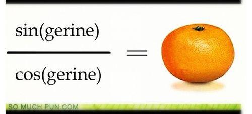 Trigonometry, Math jokes and Jokes on Pinterest