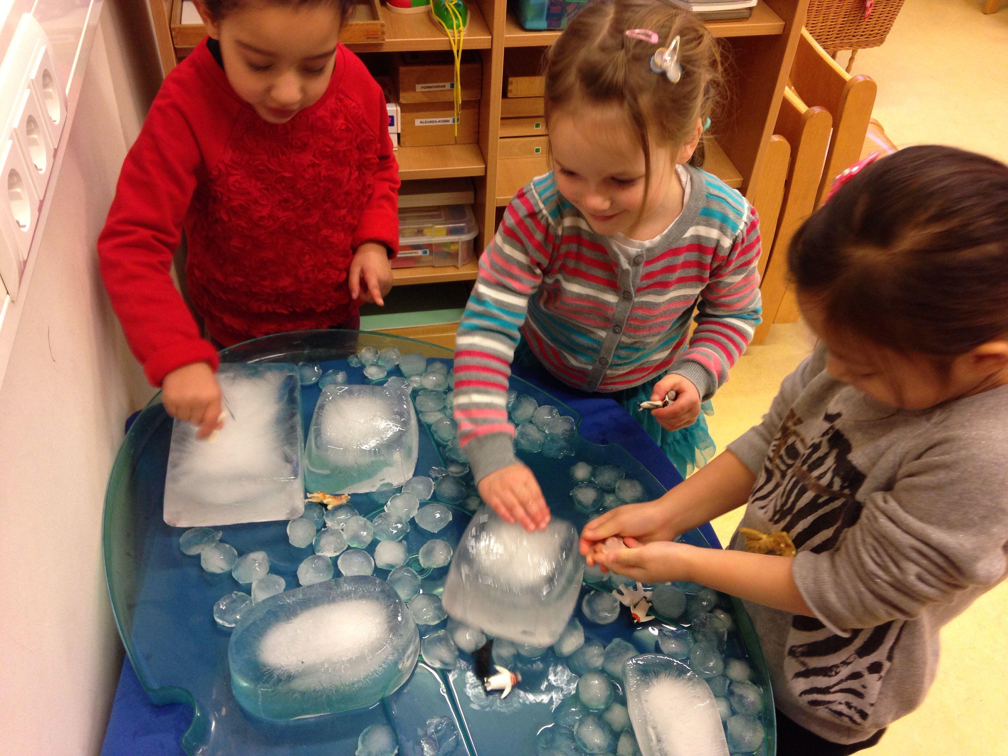 Ervaren hoe koud en glad ijs is? Een ijstafel in de klas zorgt voor veel speelplezier. Vries bakken water in, zoek wat pooldieren en de ijspret kan beginnen. #themawinterpeuters