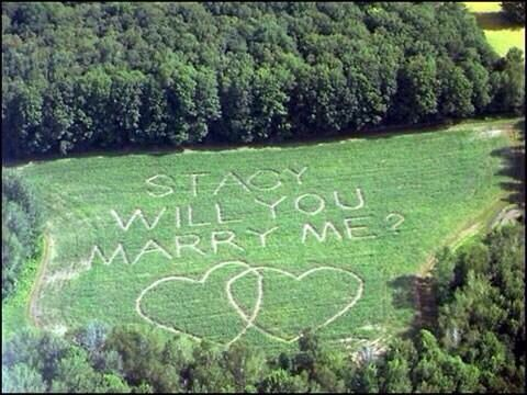 Will you marry me? Cute asking idea