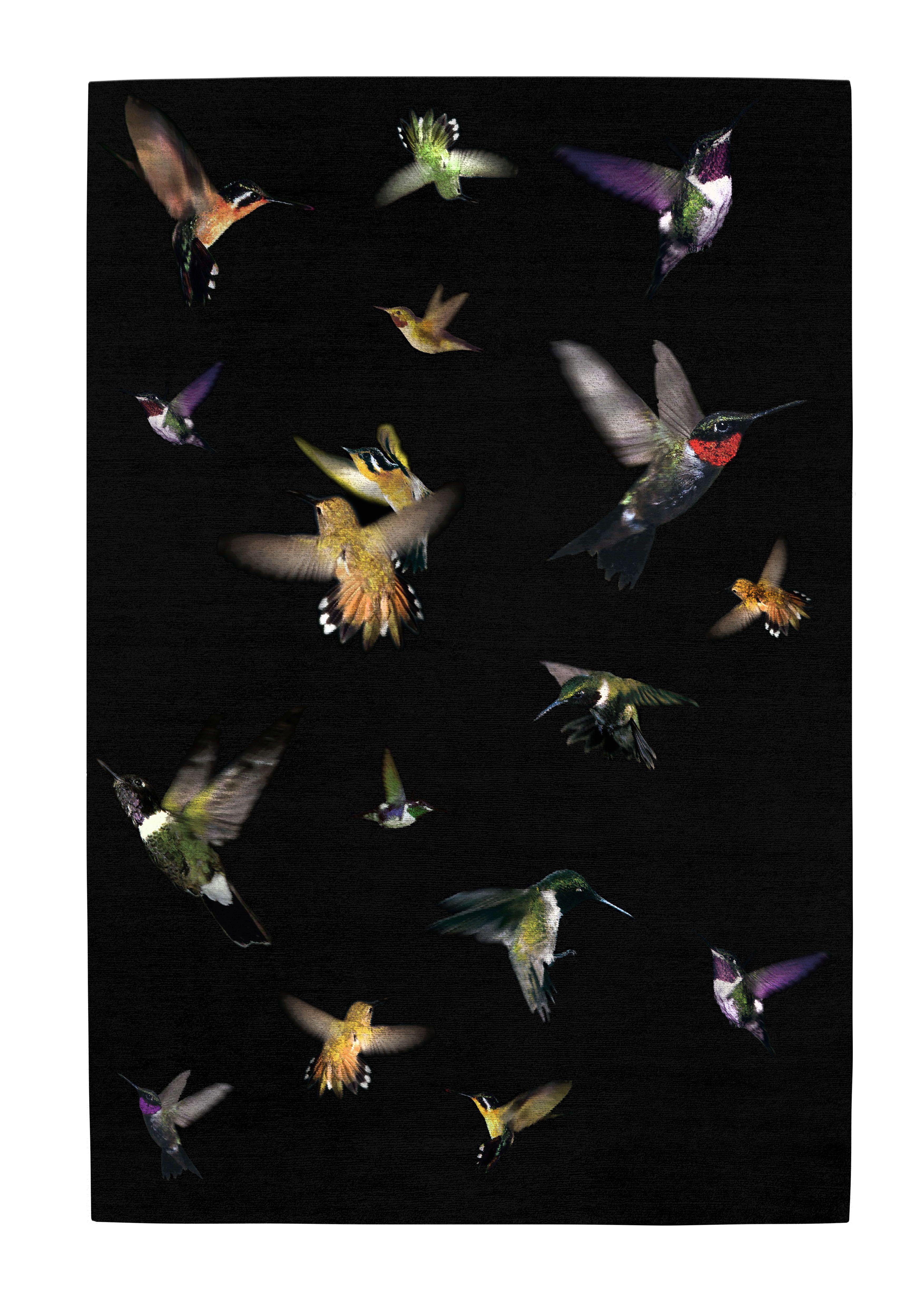 Hummingbirds Alexander Mcqueen Rug My Domestic Heart Melts With Joy