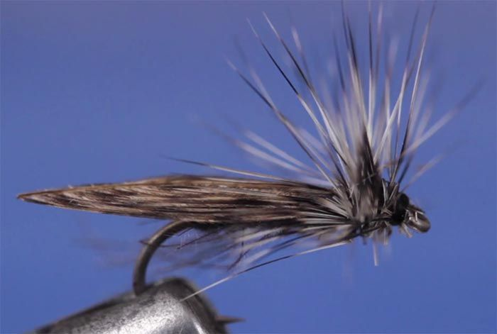 Pro Tips Top 10 Flies For Winter In The Driftless Area Orvis News Driftless Area Fly Fishing Fly Fishing Flies Pattern
