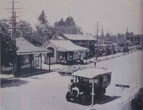 Blackheath Nsw History