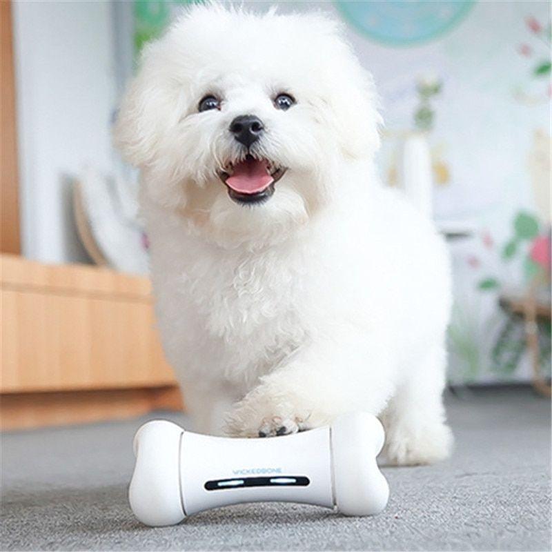 Best Electronic Smart Interactive Cat Kitten Pet Puppy Dog Toy