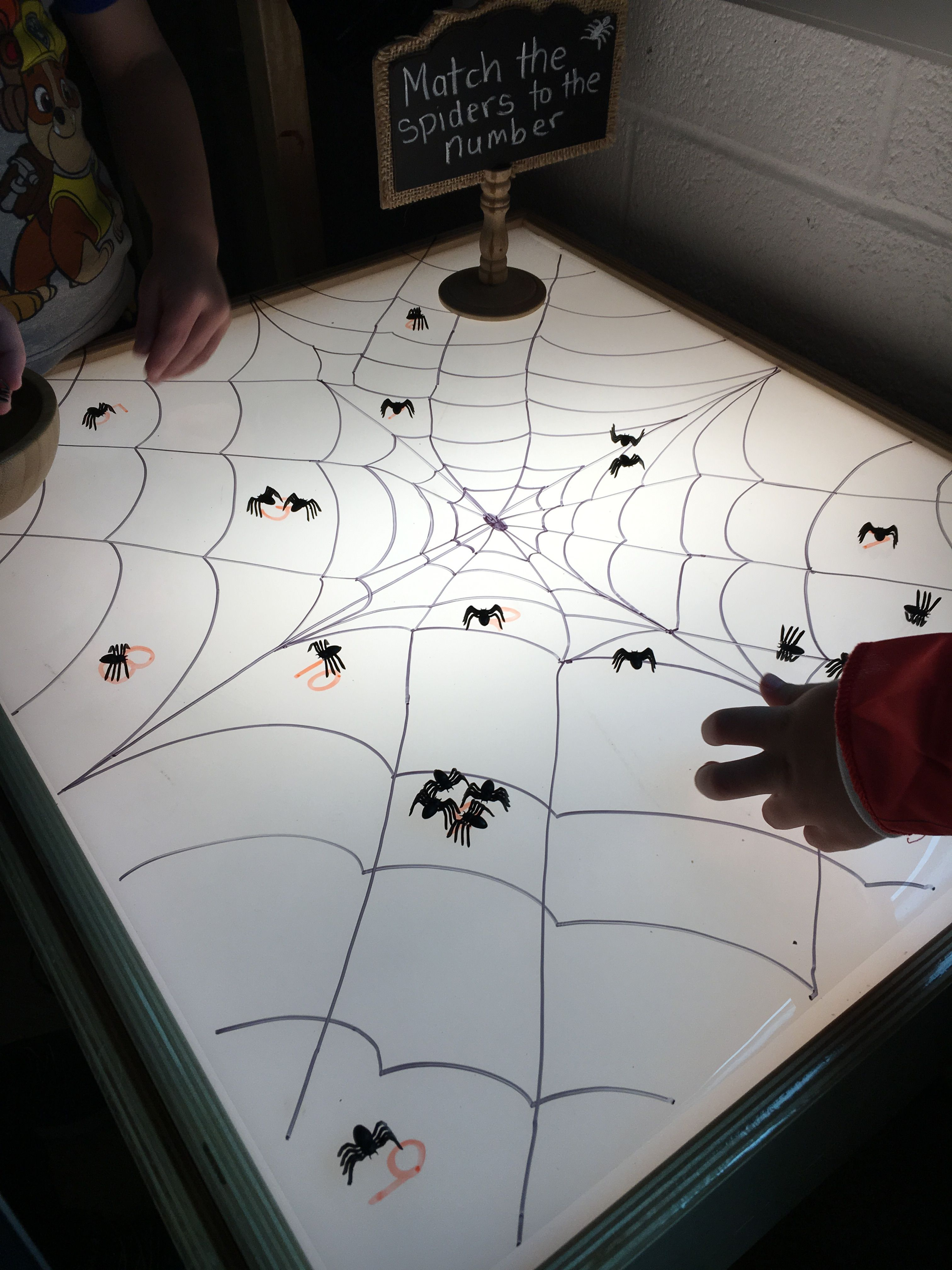 Counting Spiders On The Light Table Match Spiders With