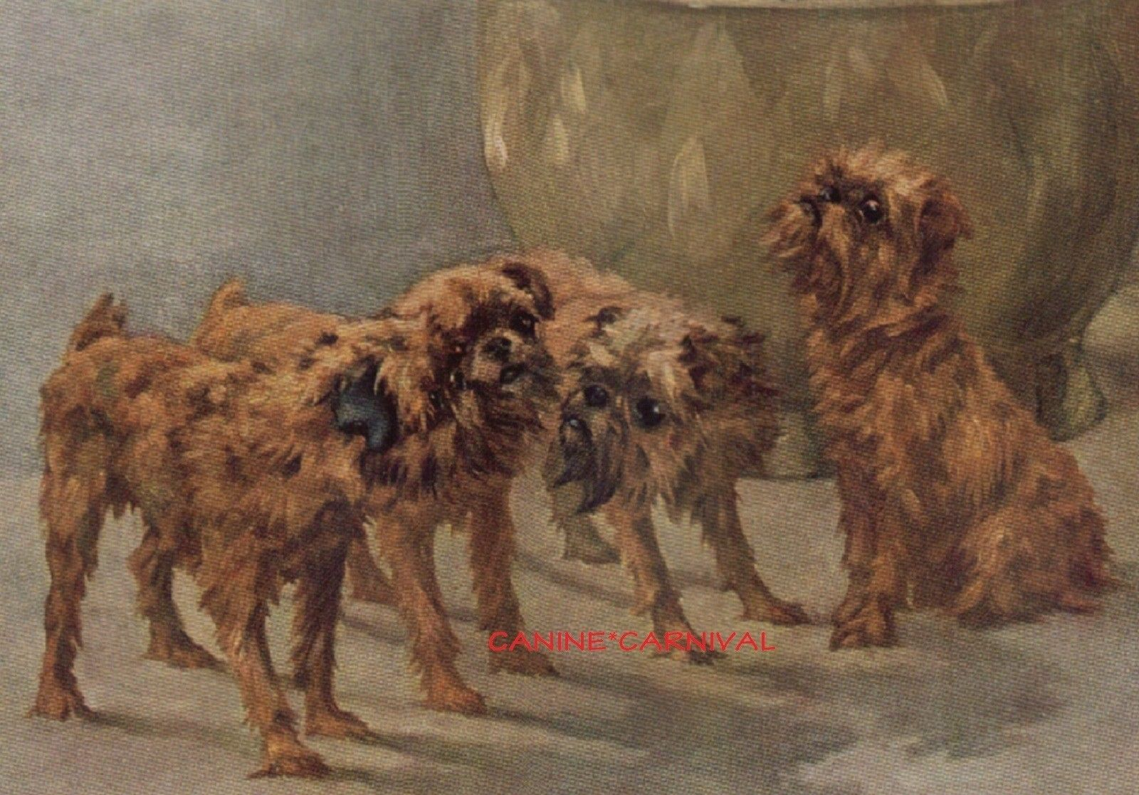 BRUSSELS GRIFFON LADY AND NAMED DOGS LOVELY VINTAGE STYLE DOG PRINT POSTER