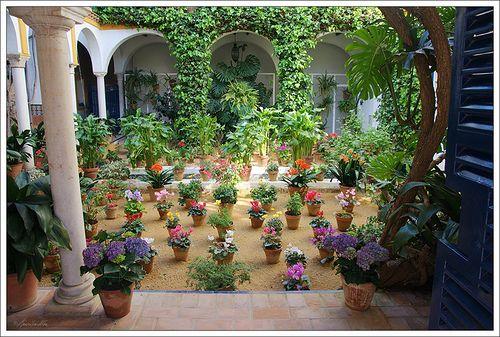 Sevilla Barrio De Santa Cruz Sevilla Santa Cruz Santa Cruz Sevilla