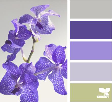flora colors