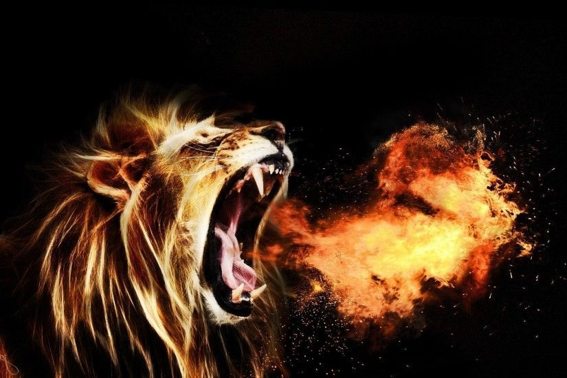 Lion Hd Wallpapers Lion Hd Pictures Free Download Hd Lion Wallpaper Fire Lion Lion Hd Wallpaper