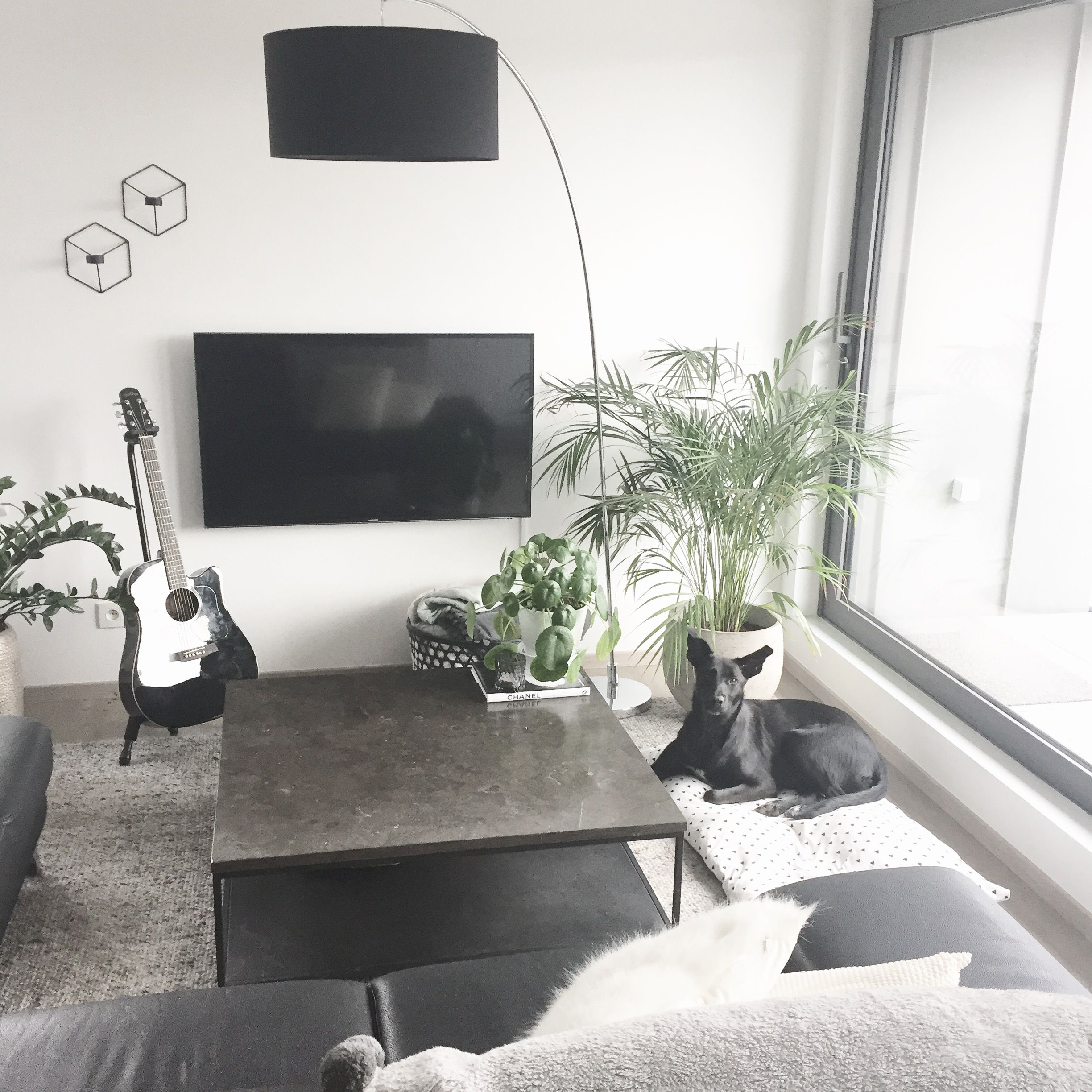 Lounge room salon coffee table plants guitar lamp lounge room salon coffee table plants guitar lamp black white geotapseo Gallery