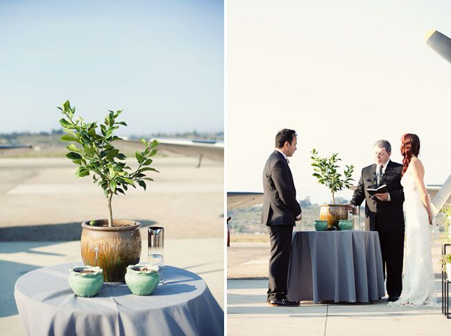 Wedding Tree Planting - Garden Design Ideas
